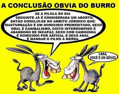A conclusão do burro